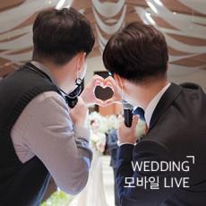 결혼식 생중계 - 모바일 타입