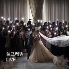 결혼식 생중계 - VDSLR 타입